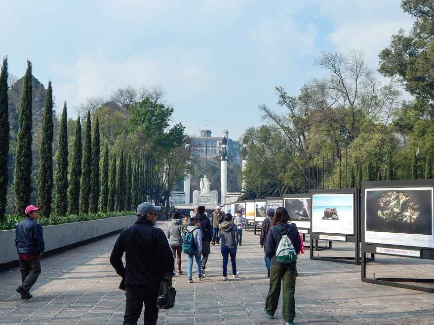 entrada chapultepec