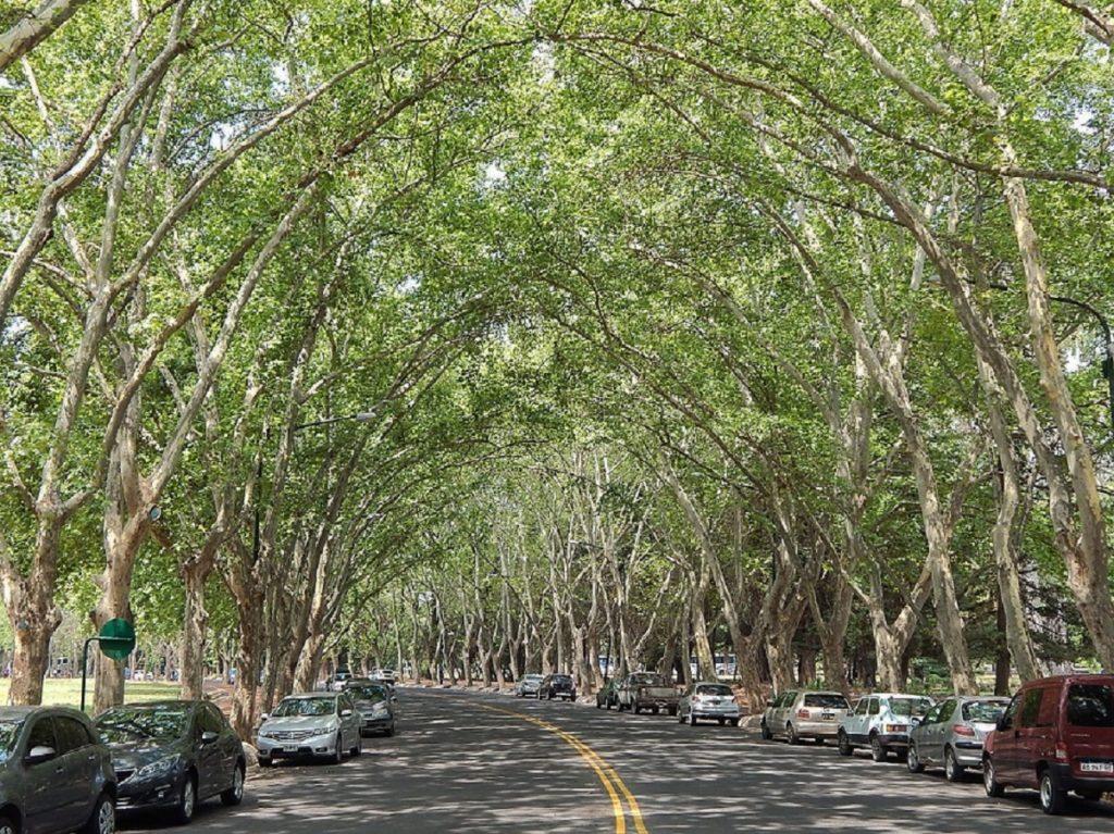 Mendoza: informações turísticas