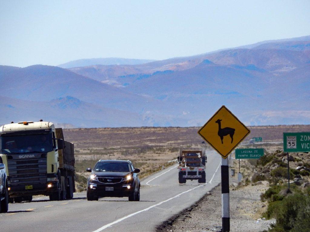 estrada para Chivay, placa alertando vicunhas