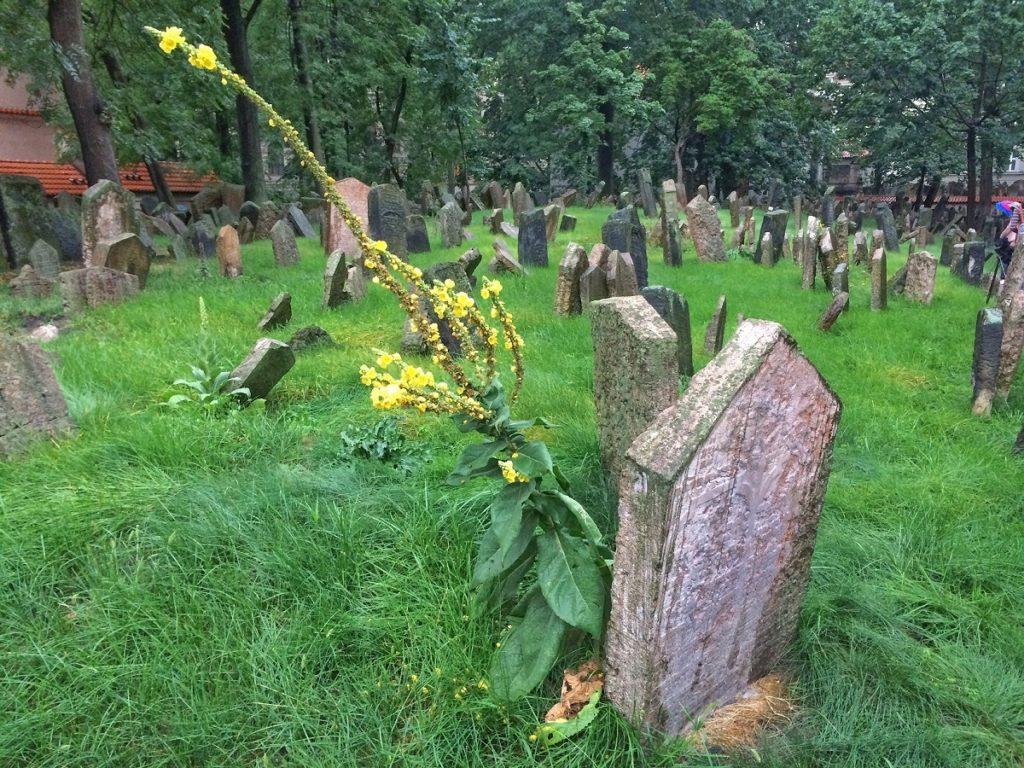 Cemitério Judeu de Praga.